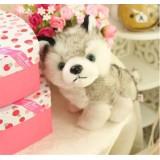 Wholesale - Husky Dog Plush Toy Imitate Toy 23cm/9inch