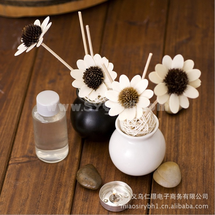 Home Air Freshener Aromatherapy Essential Oil and Ceramic Bottle Set -R204