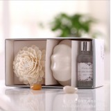 Wholesale - Home Air Freshener Aromatherapy Essential Oil and Ceramic Bottle Set -2K203