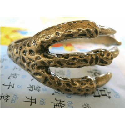 http://www.orientmoon.com/16102-thickbox/vintage-stylish-eagle-claw-bracelet-tc34.jpg