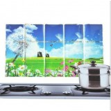 Wholesale - Kitchen PVC Durable Petal&Dandeline Style Oilproof Sticker
