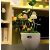Wholesale - Avatar Mushroom Light