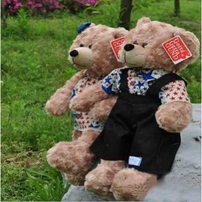 http://www.orientmoon.com/25496-thickbox/lovely-cartoon-couple-teddy-bear-pp-cotton-stuffed-plush-toys-2pcs.jpg