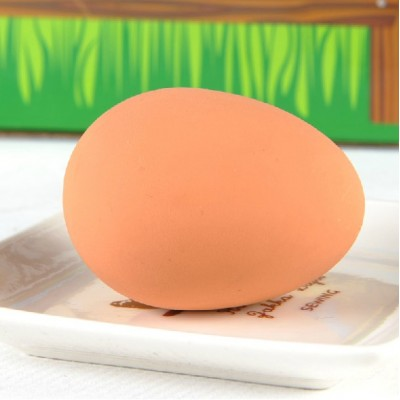 http://www.orientmoon.com/63428-thickbox/hoopet-safe-rubber-egg-shaped-dog-training-toy.jpg