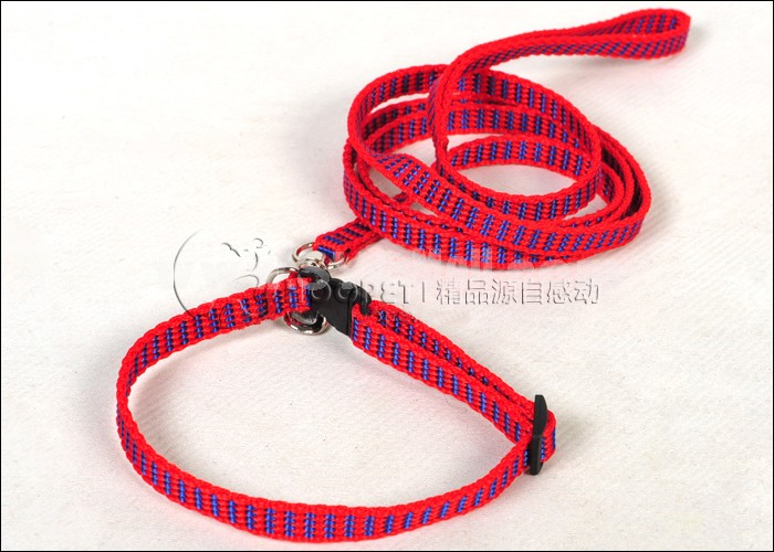 Soft Nylon Leash with Collar for Small Dogs