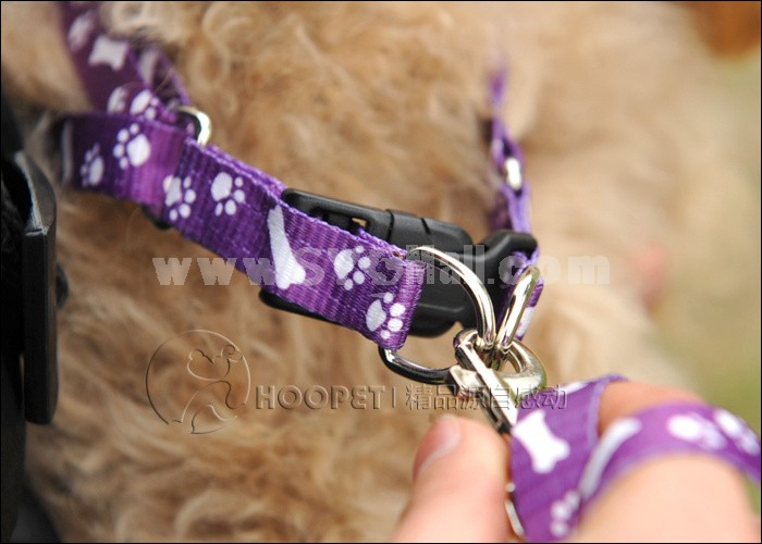 Soft PP Chest Strape with Leash for Puppies