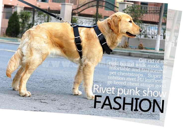Rivets Decorated Chest Strape with Leash for Large Dogs Chest 19-26inch