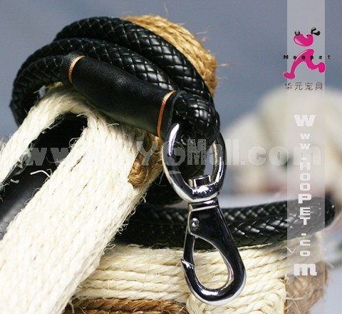 Exquisite Leather Leash for Middle-sized/Large Dogs