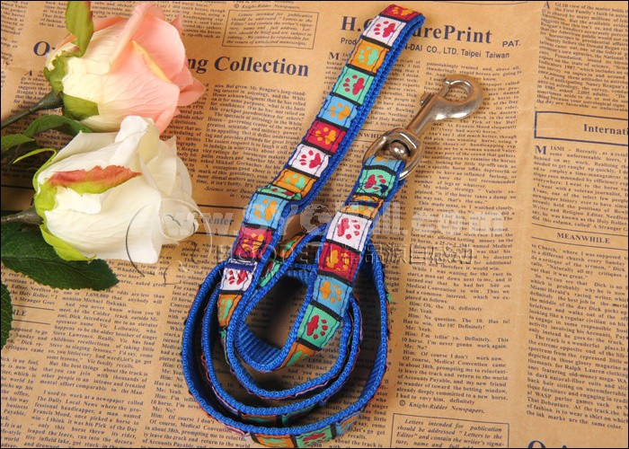 Blue Leash Decorated with Dog Paws for Small/Middle-sized Dogs