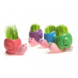 Wholesale - Vogue Horticulture DIY Mini Green Plant Snall Ceramic Stand Pattern Plant