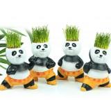 Wholesale - Vogue Horticulture DIY Mini Green Plant Kung Fu Panda Ceramic Stand Pattern Plant