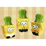 wholesale - Vogue Horticulture DIY Mini Green Plant SpongeBob SquarePants Ceramic Stand Pattern Plant