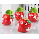 Wholesale - Vogue Horticulture DIY Mini Green Plant Strawberry Ceramic Stand Pattern Plant