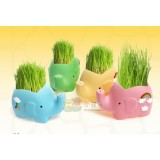 Wholesale - Vogue Horticulture DIY Mini Green Plant Elegant Ceramic Stand Pattern Plant