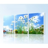Wholesale - Modern Simple Style Home-super 3pcs 15mm Ply Waterproof Wall Frameless Mural Painting Each Size 40*60cm