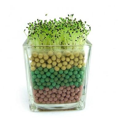 http://www.orientmoon.com/69024-thickbox/colorful-carbon-ball-diy-green-plant.jpg