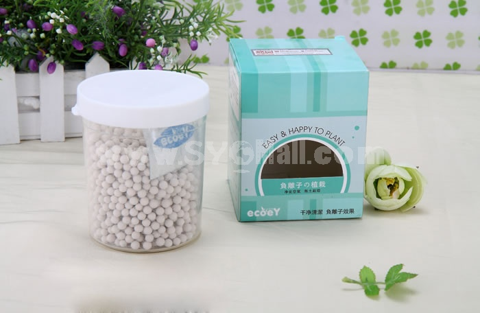 Carboon Balls DIY Green Plant