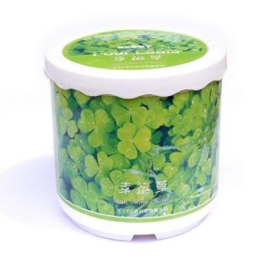 http://www.orientmoon.com/69034-thickbox/four-leaf-clover-diy-green-plant.jpg