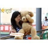 Wholesale - Valentine's Shy Bear Plush Toy 50cm