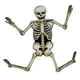 Wholesale - Creative Holloween Décor Skeleton 82CM/32""
