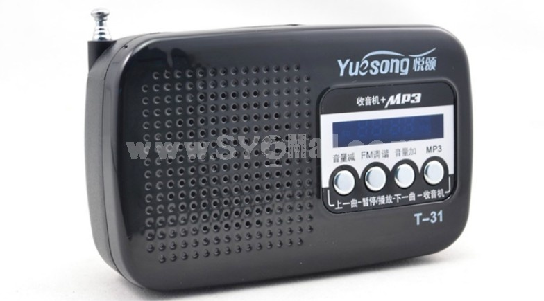YueSong T31 Radio Shape Speaker Support TF SD Card U Disk with FM Radio
