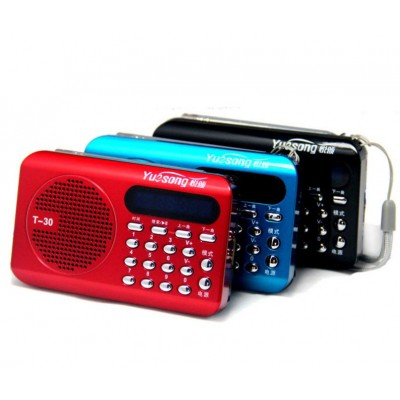 http://www.orientmoon.com/79957-thickbox/yuesong-t30-radio-shape-multi-card-read-speaker-with-fm-radio.jpg