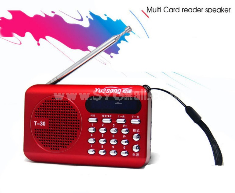 YueSong T30 Radio Shape Multi Card Read Speaker with FM Radio
