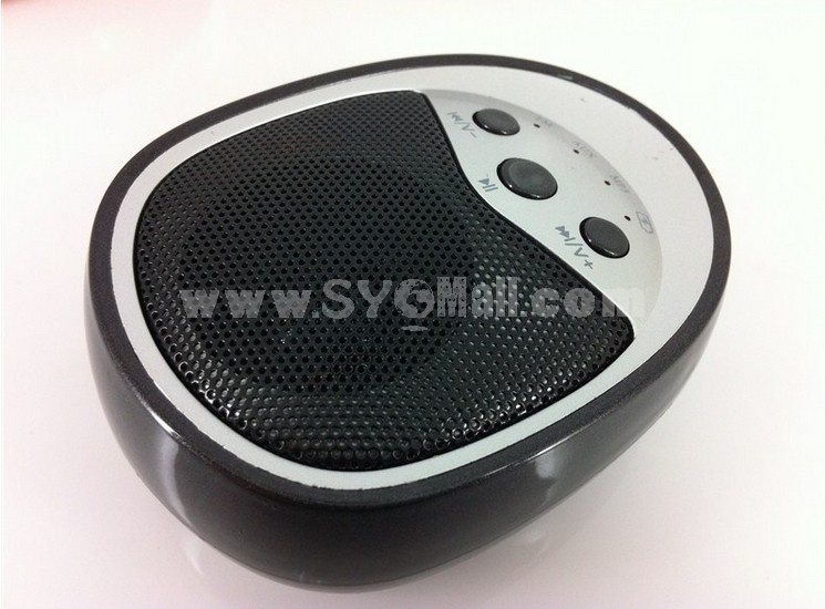 Dk-622 Mini Portable Multi Card Reader Speaker with FM Radio