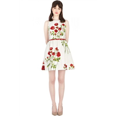 http://www.orientmoon.com/84664-thickbox/2013-new-arrival-sleeveless-painting-slim-dress-evening-dress-4600.jpg