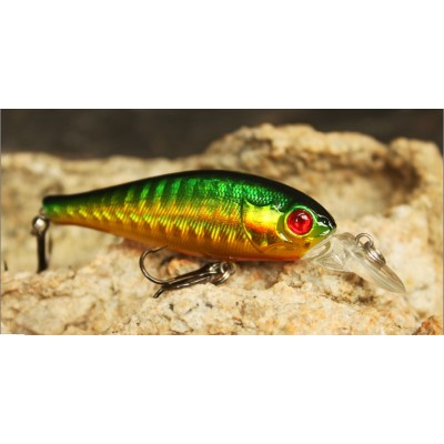 http://www.orientmoon.com/8886-thickbox/fishing-hunter-fishing-lures-minnow-dm9c.jpg