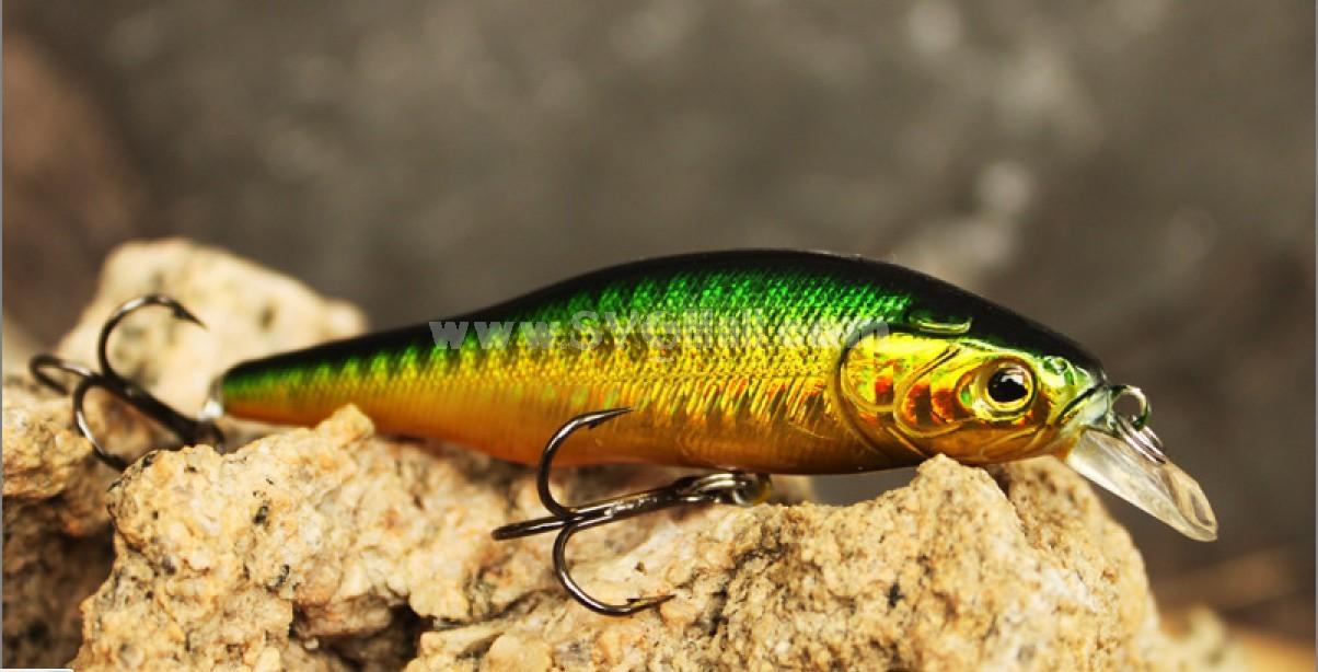 fishing Hunter fishing lures DM2C