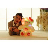 Wholesale - Sound Control Love Bear with Light Effect Plush Toy 65cm/25.6inch