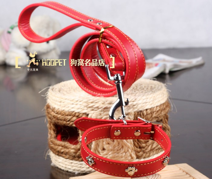 Fashion Design PU Dog Leash with Collar for Middle-sized Dogs